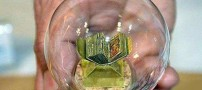 Dbdh-world-smallest-Quran-ever-did-Photo