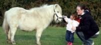 Ride-the-world-s-smallest-horse-World-s-Smallest-Girl-photos