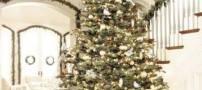 Beautifully-decorated-Christmas-tree-in-2014