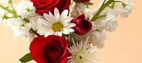 Beautiful-flowers-and-what-it-means-for-gift-giving-+-photos