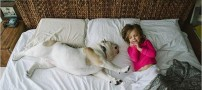 Spectacular-photos-of-friends-this-girl-with-big-dog-30