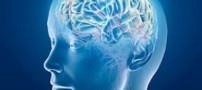 هک شدن مغز انسان توسط  محققان