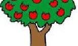فال بی نظیر درختان میوه
