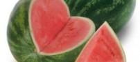 چه میوه ای خون را تصفیه می کند