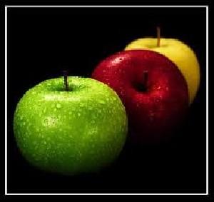 میوه ای که باعث لاغری حتمی  می شود