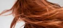 زیبایی و مقاومت بیشتر مو با رعایت 3 نکته مهم