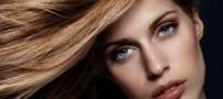 مراقبت های لازم از موهای خشک،معمولی و چرب