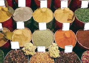 گیاهی که جوشاندن آن بسیار مضر است