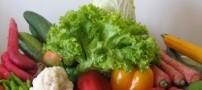 معرفی سبزی هایی علیه آلرژی