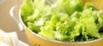 2 روش غلط برای ضد عفونی کردن سبزیجات