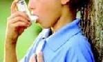 معرفی مواد غذایی با حساسیت زیاد و کم