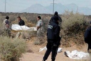 کشف جسد 2 برادر مفقودی در مینی بوس!