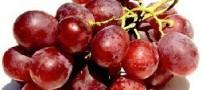 تشدید التهاب و درد گلو با این دو میوه