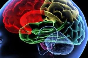موسیقی مغز هم ساخته شد!!