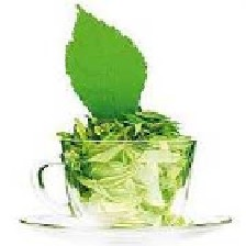 روش مصرف چای سبز برای لاغری