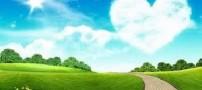مسیر خوشبختی كجاست