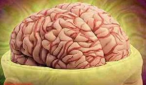 تفاوت مغز افرادی که خودکشی میکنند با افراد عادی!