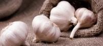 یک منبع گیاهی فوق العاده برای کاهش چربی خون