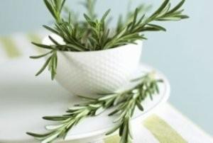 بوییدن این گیاه، حافظه شما را تقویت می کند
