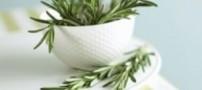 بو کردن این گیاه جالب حافظه شما را تقویت می کند