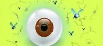 مگس پران عارضه چشمی كه درمان ندارد