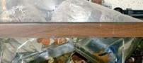 آموزش نحوه جابجا کردن ماهی اکواریوم