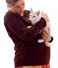 خطرات نگهداری گربه خانگی برای زنان باردار