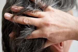 آموزش و راهنمایی انواع تقویت کننده های گیاهی مو