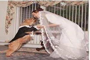 دختر پسرهای همجنسگرا که با حیوانات ازدواج کردند (عکس)