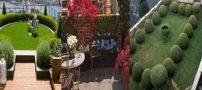 مدل های جدید روف گاردن؛ بام باغ | دکوراسیون پشت بام آرایی با گل