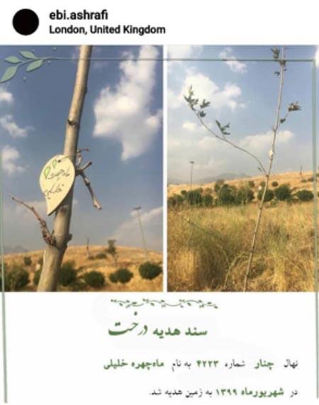پست جگرسوز ابی اشرفی در چهلمین روز درگذشت ماهچهره